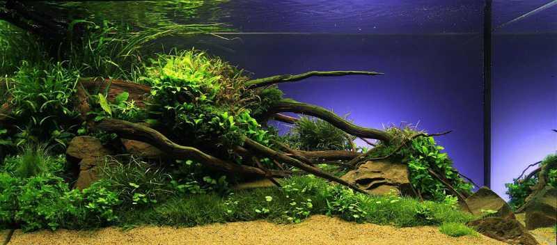Декорации для аквариума