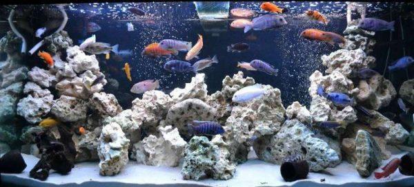 Декоративные камни для аквариума