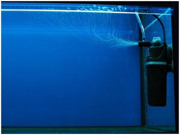 Биофильтр для аквариума: из чего он состоит и как работает