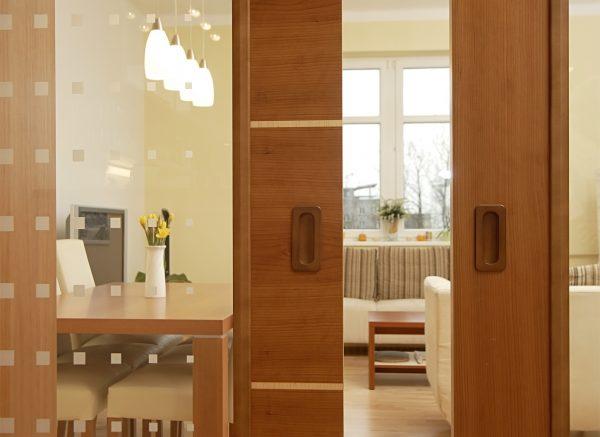 steklyannye-dveri-v-interere-1