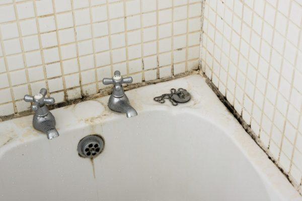 Ванная комната без плесени