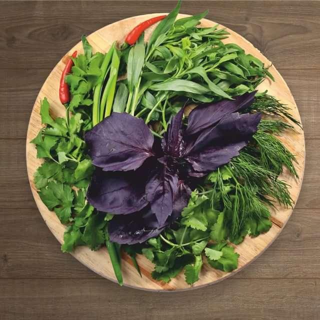 Зелень — лучшее в рационе. Какие пять видов обязательно должны быть в тарелке?